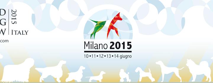 World Dog Show 2015 in Mailand